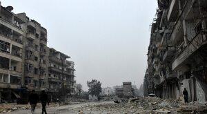 Sępy nad Syrią